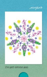 מגוון הפרחים למגן הלב